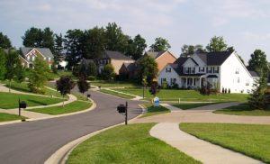 Bringing Neighborhoods Back to Life